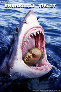 IDS shark attack survey RESULT
